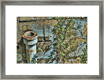 Rusted Pipe With Leaves Framed Print by Mike McCool