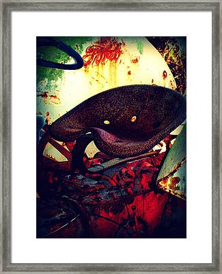 Rusted Seat Framed Print by Dana  Oliver