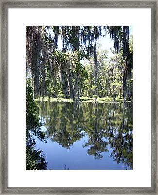 Rustic Florida River Shadows Framed Print by Warren Thompson