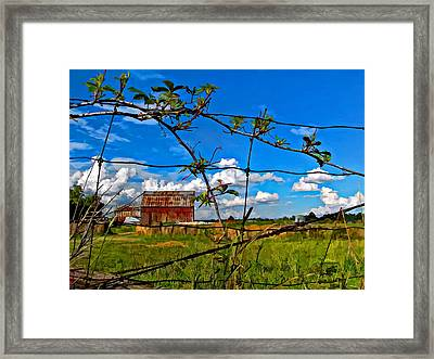 Rustic Frame Paint Framed Print by Steve Harrington