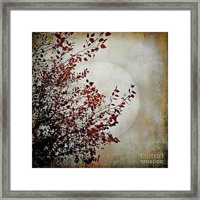 Rustic Moon Framed Print
