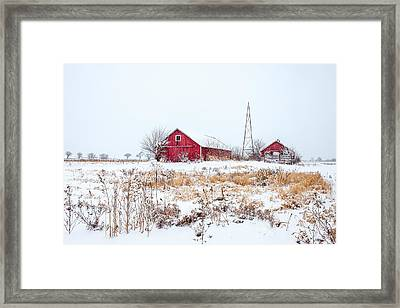 Rustic Reds Framed Print by Todd Klassy
