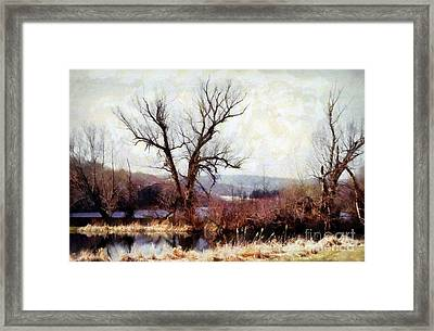 Rustic Reflections Framed Print by Janine Riley