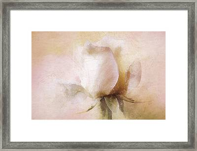 Rustic Rose Framed Print by Terry Davis