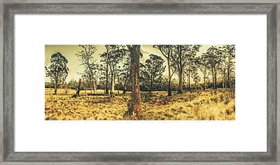 Rustic Rural Country Tasmania Framed Print