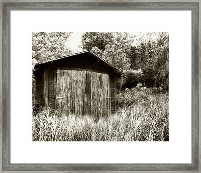Rustic Shed Framed Print by Perry Webster