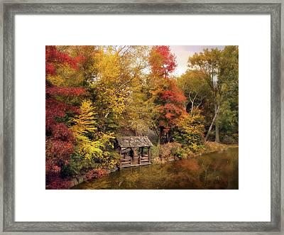 Rustic Splendor Framed Print