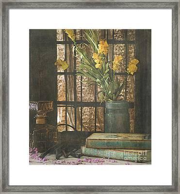 Rustic Still Life 1 Framed Print by Teresa Wilson