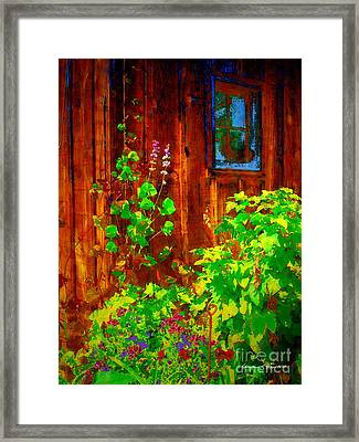 Rustic Summer Shed Framed Print by Christine S Zipps