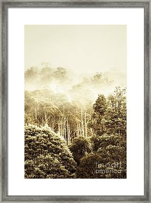 Rustic Tasmanian Rural Forest Framed Print by Jorgo Photography - Wall Art Gallery