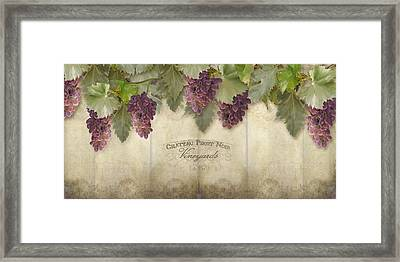 Rustic Vineyard - Pinot Noir Grapes Framed Print by Audrey Jeanne Roberts