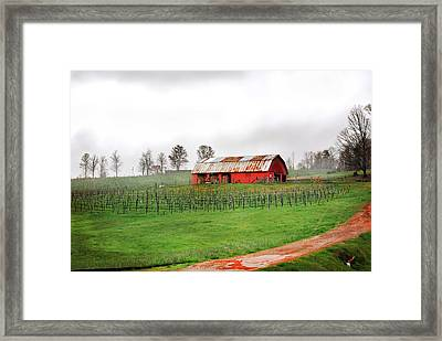 Rustic Wine Framed Print