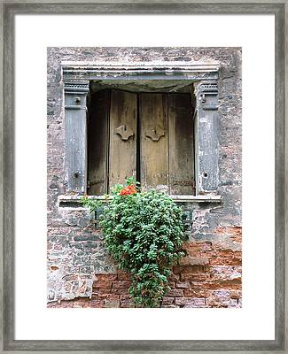 Rustic Wooden Window Shutters Framed Print by Donna Corless