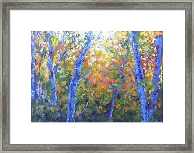 Rustlers Gulch Afternoon Framed Print