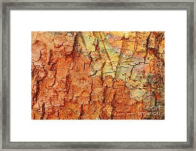 Rusty Bark Abstract Framed Print