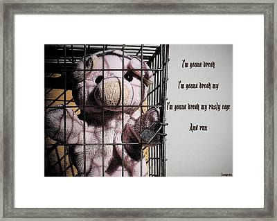 Rusty Cage 2 Framed Print
