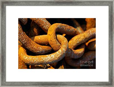 Rusty Chain Framed Print by Carlos Caetano