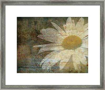 Framed Print featuring the photograph Rusty Dreams by Traci Cottingham