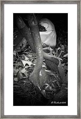 Framed Print featuring the photograph Rusty Embrace by Betty Northcutt