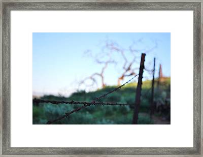 Framed Print featuring the photograph Rusty Gate Rural Tree 2 by Matt Harang