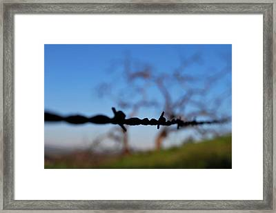 Framed Print featuring the photograph Rusty Gate Rural Tree by Matt Harang