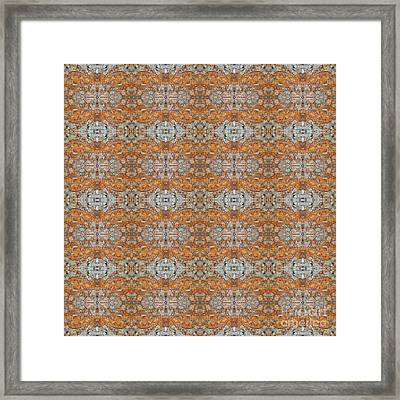 Rusty Lace Framed Print