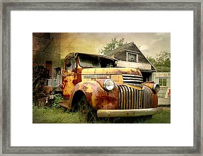 Rusty Lobster Framed Print by Diana Angstadt