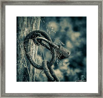 Rusty Lock And Chain Framed Print by Ken Morris