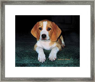 Rusty Puppy Framed Print