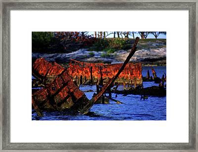 Rusty Ribs Framed Print by Mike Flynn