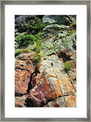 Rusty Rock Face Framed Print