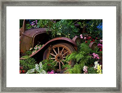 Rusty Truck In The Garden Framed Print by Garry Gay