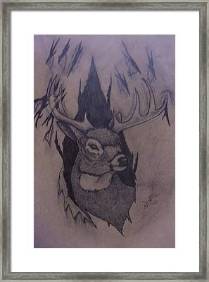 Rut Rage Framed Print by Chris Newell