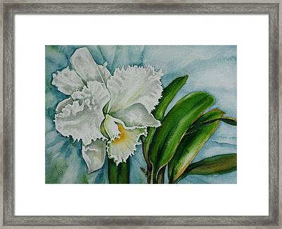 Ruth's Orchid Framed Print