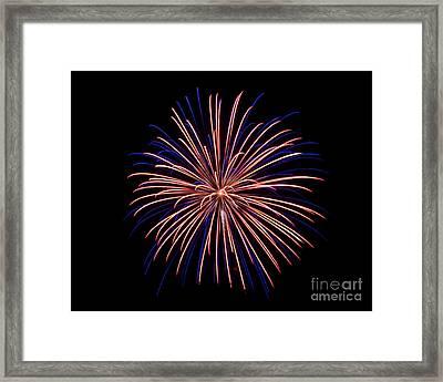 Rvr Fireworks 48 Framed Print