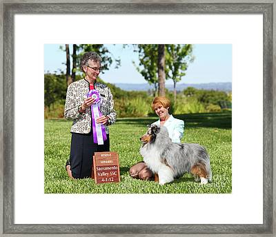 Rwd Sirio Chillin At Mistybrook Framed Print by Chris Lynch