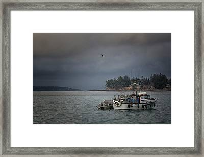 Framed Print featuring the photograph Ryan D by Randy Hall
