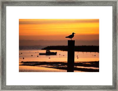 Rye Harbor Sunrise Framed Print by Eric Gendron