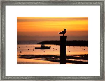 Rye Harbor Sunrise Framed Print