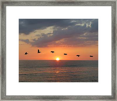 Rythyms Of Nature Framed Print by Marie and Michael Fields