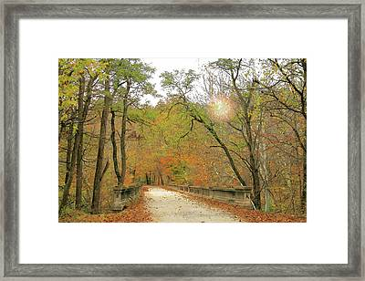 S And K Bridge Framed Print