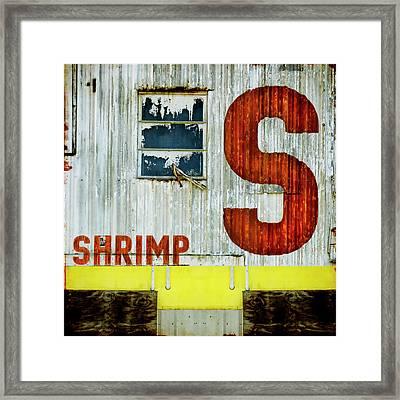 S Is For Shrimp  Framed Print