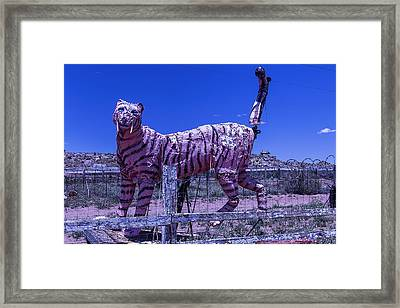 Saber-tooth Cat Framed Print by Garry Gay