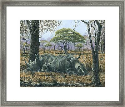 Sabi Sand Siesta Framed Print by Richard Harpum