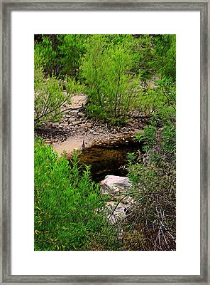 Framed Print featuring the photograph Sabino Canyon Op44 by Mark Myhaver