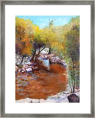 Sabino Canyon Scenes Framed Print