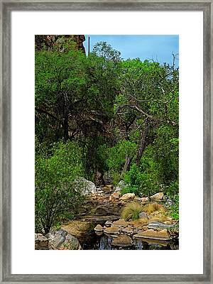 Framed Print featuring the photograph Sabino Canyon V49 by Mark Myhaver