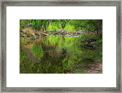 Framed Print featuring the photograph Sabino Reflection Op53 by Mark Myhaver
