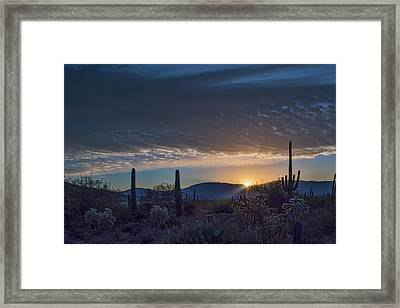 Framed Print featuring the photograph Sabino Sunrise by Dan McManus