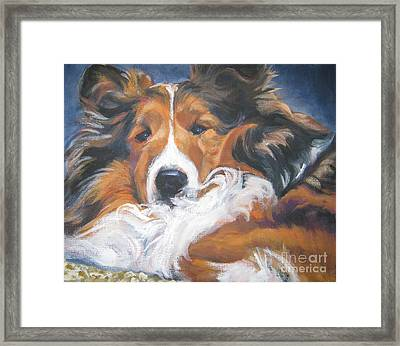 Sable Shetland Sheepdog Framed Print by Lee Ann Shepard